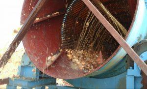 Alluvial gold washing process